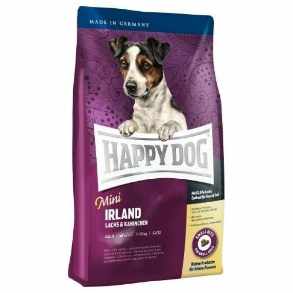 happy dog mini Irland